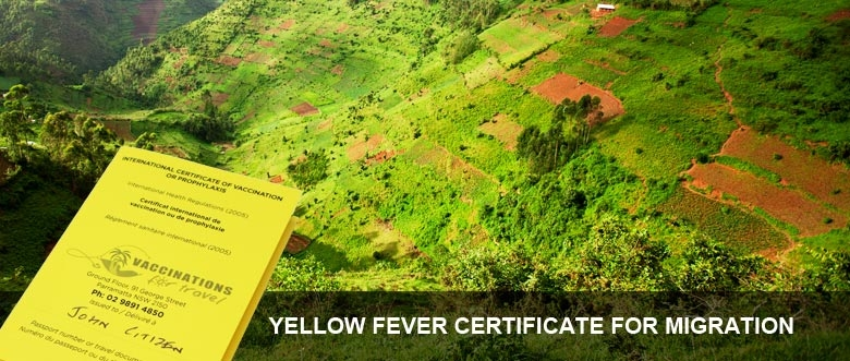 Yellow fever Certificate for Immigration