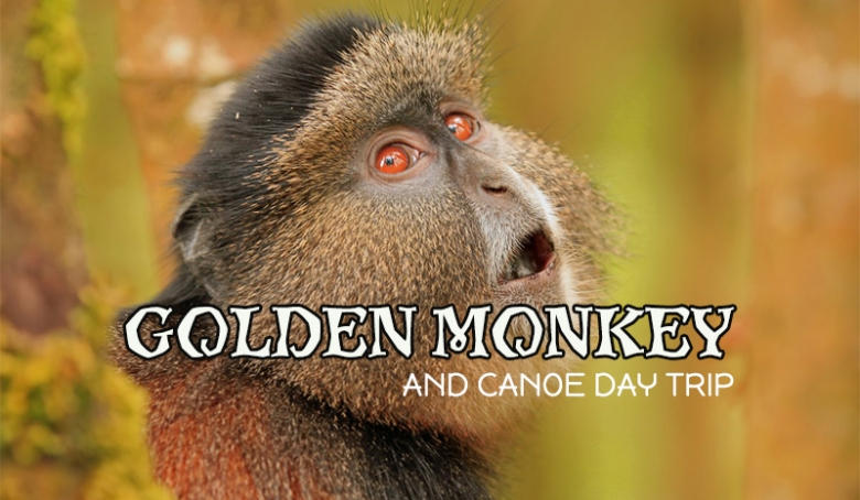 Golden monkeys and Canoeing day trip