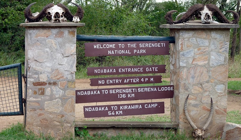 4 Days / 3 Nights Serengeti & Ngorongoro Safari