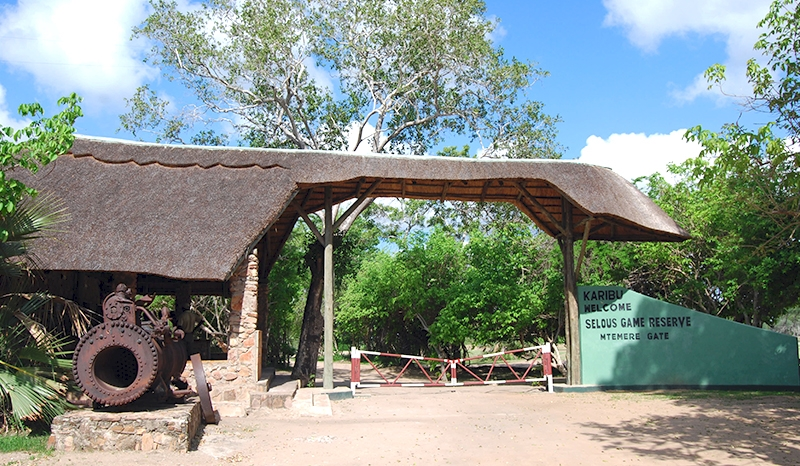 Mikumi National Park & Selous Reserve Safari
